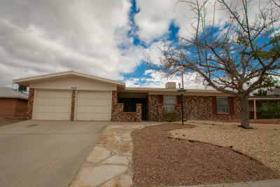 Single Family Home For Sale: 344 Rio Tinto Drive