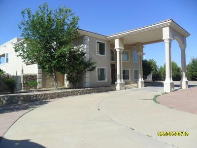 El Paso Single Family Home For Sale: 800 Wild Sage Court