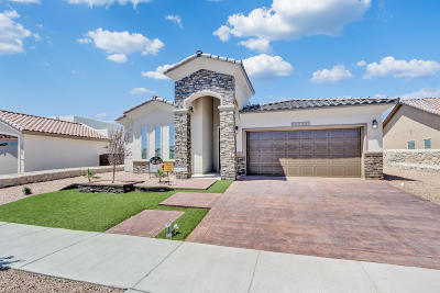 El Paso Single Family Home For Sale: 13682 Holbeck Street