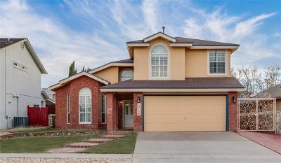 El Paso Single Family Home For Sale: 13728 Paseo Milagro Avenue