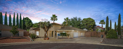 El Paso Single Family Home For Sale: 11813 Pueblo Lindo Court