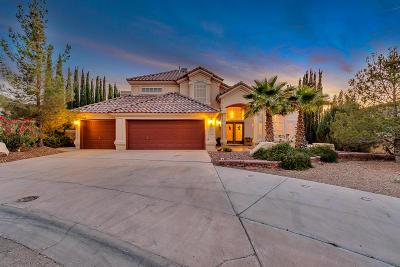 El Paso TX Single Family Home For Sale: $355,000