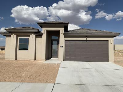 El Paso TX Single Family Home For Sale: $201,950