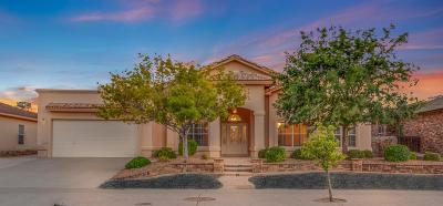 El Paso TX Single Family Home For Sale: $254,950