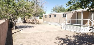 El Paso Single Family Home For Sale: 9979 Socorro Road