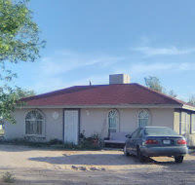 San Elizario Single Family Home For Sale: 13350 Guitar Dr. Drive