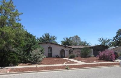 El Paso TX Single Family Home For Sale: $246,000