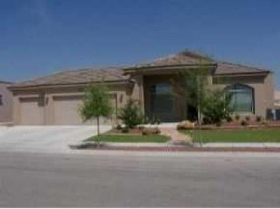 El Paso TX Single Family Home For Sale: $325,300