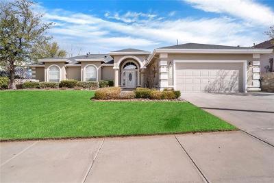 El Paso Single Family Home For Sale: 1139 Eagle Ridge Drive