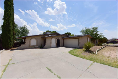 El Paso Single Family Home For Sale: 11216 Pony Soldier Avenue