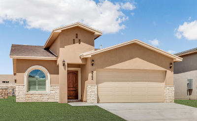 Single Family Home For Sale: 2840 Tierra Oasis