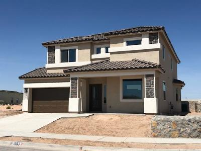 Single Family Home For Sale: 1053 Paseo De Suerte Drive