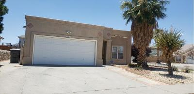 El Paso Single Family Home For Sale: 10751 Pearl Sands Drive