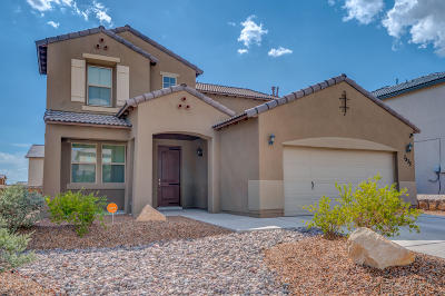 El Paso Single Family Home For Sale: 7835 Enchanted Path Drive