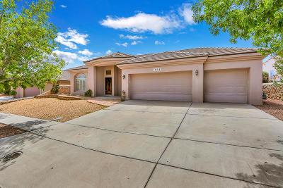 Ridgeview Est Single Family Home For Sale: 1505 Capitan Ridge Ridge