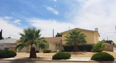 El Paso Single Family Home For Sale: 9248 McFall Drive