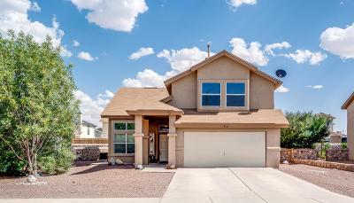 Single Family Home For Sale: 716 Portillo Drive