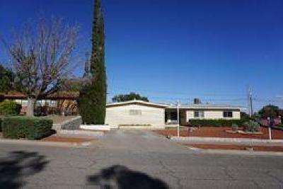 El Paso Single Family Home For Sale: 3306 Emerald Drive