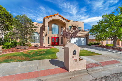 El Paso Single Family Home For Sale: 668 Skydale Drive