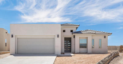 Horizon City Single Family Home For Sale: 13601 Olney
