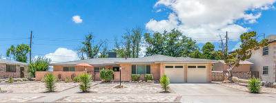 Single Family Home For Sale: 8928 Mettler Drive