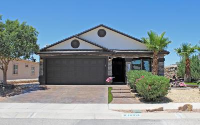 Horizon City Single Family Home For Sale: 14313 Desert Sky Drive
