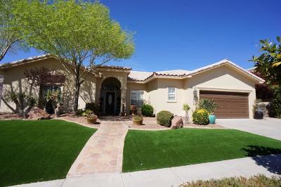 El Paso Single Family Home For Sale: 1505 Cimarron Ridge Drive