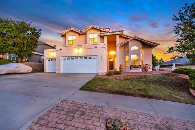 El Paso Single Family Home For Sale: 6824 Canyon Run Drive