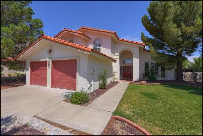 El Paso Single Family Home For Sale: 7213 Meriden Lane