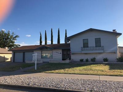 El Paso Single Family Home For Sale: 10209 Donway Place