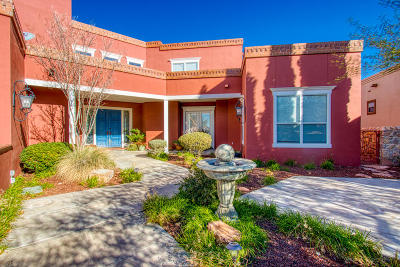 El Paso Single Family Home For Sale: 6493 Calle Placido Drive