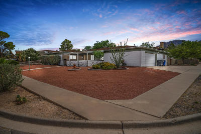 El Paso Single Family Home For Sale: 300 Skyway Lane