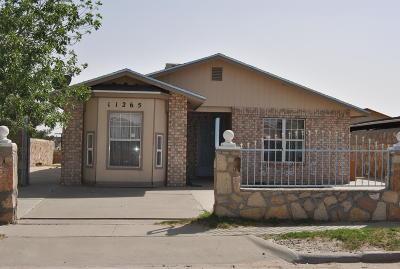 Socorro Single Family Home For Auction: 11265 Cielo Mistico Drive