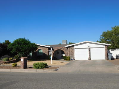 Vista Del Sol Single Family Home For Sale: 1828 Pete Brown Place