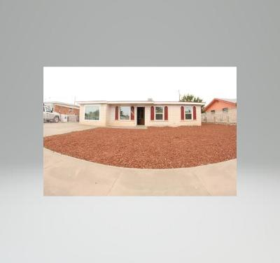 El Paso Single Family Home For Sale: 6025 Sinclair Street