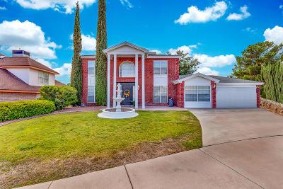 Ridgeview Est Single Family Home For Sale: 1107 Sun Ridge Drive