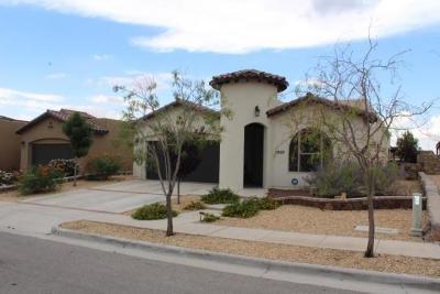 Single Family Home For Sale: 1637 Land Rush Street