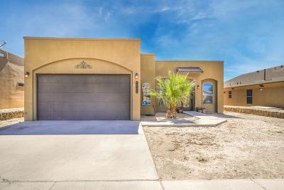 Single Family Home For Sale: 905 Desert Sage Street
