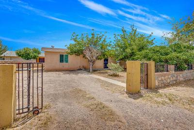 Socorro Single Family Home For Sale: 10319 Pritam Drive