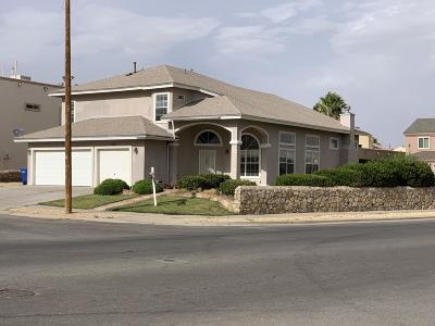 Vista Del Sol Single Family Home For Sale: 1300 Rosa Guerrero
