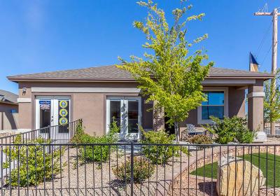 Single Family Home For Sale: 3956 Desert Nomad