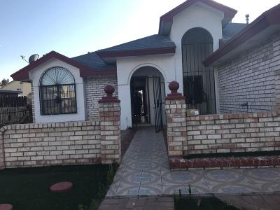 Vista Del Sol Single Family Home For Sale: 2909 Gilberto Avila Street