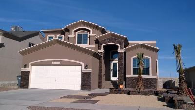 Single Family Home For Sale: 401 Prime Desert Drive