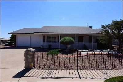 El Paso Single Family Home For Sale: 10228 Galahad Drive