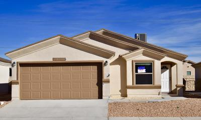 Single Family Home For Sale: 12048 Mesquite Thorn