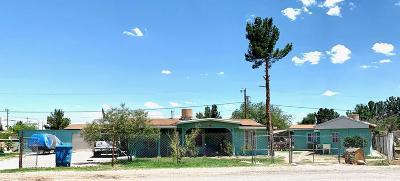 San Elizario Single Family Home For Sale: 1348 Yanar Way