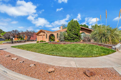 Single Family Home For Sale: 800 Brisa Del Mar Drive