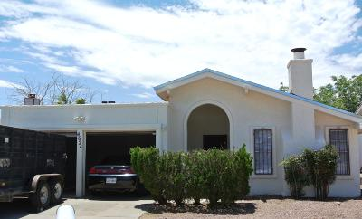 El Paso Single Family Home For Sale: 4624 Gabriel Drive