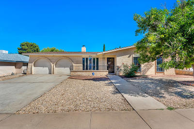 El Paso Single Family Home For Sale: 4724 Lucy Drive