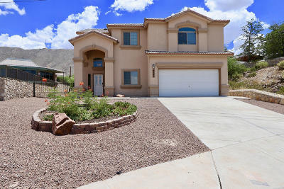 El Paso Single Family Home For Sale: 4242 Camelot Heights Drive
